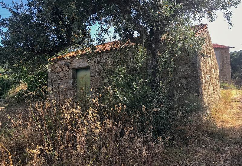 Buying Land in Portugal in Uncertain Times
